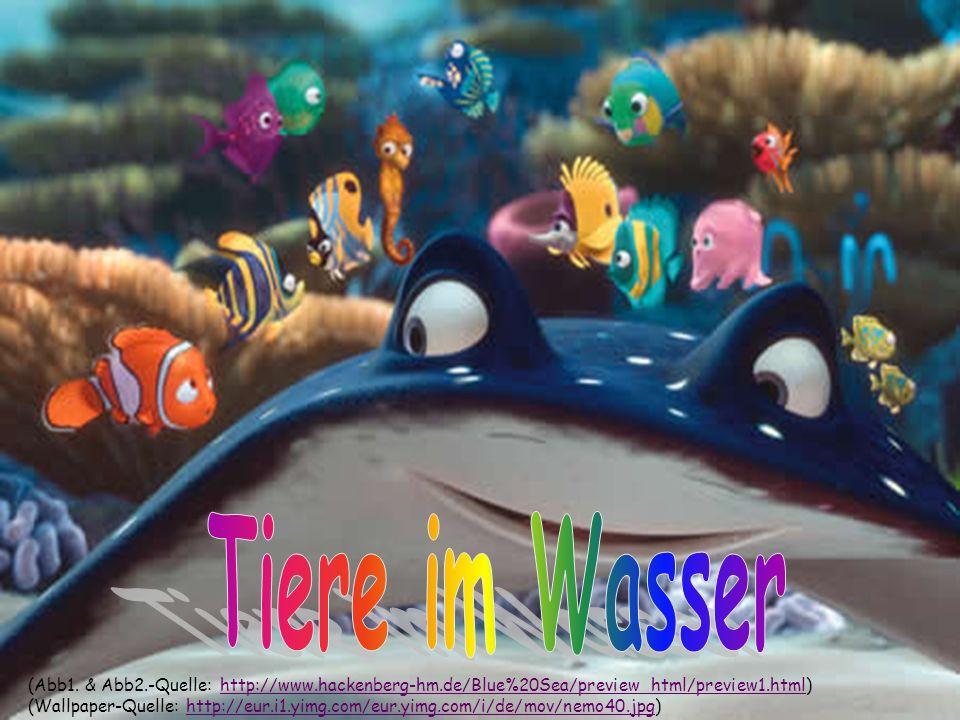 Tiere im Wasser (Abb1. & Abb2.-Quelle: http://www.hackenberg-hm.de/Blue%20Sea/preview_html/preview1.html)