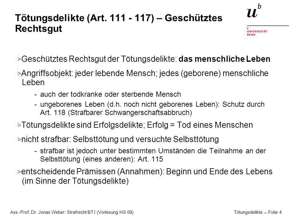 Tötungsdelikte (Art. 111 - 117) – Geschütztes Rechtsgut