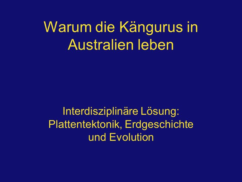 Warum die Kängurus in Australien leben