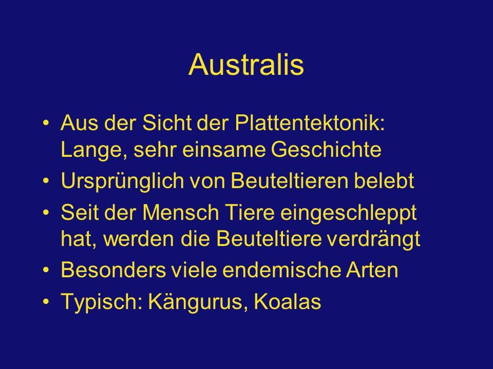 Australis Aus der Sicht der Plattentektonik: Lange, sehr einsame Geschichte. Ursprünglich von Beuteltieren belebt.