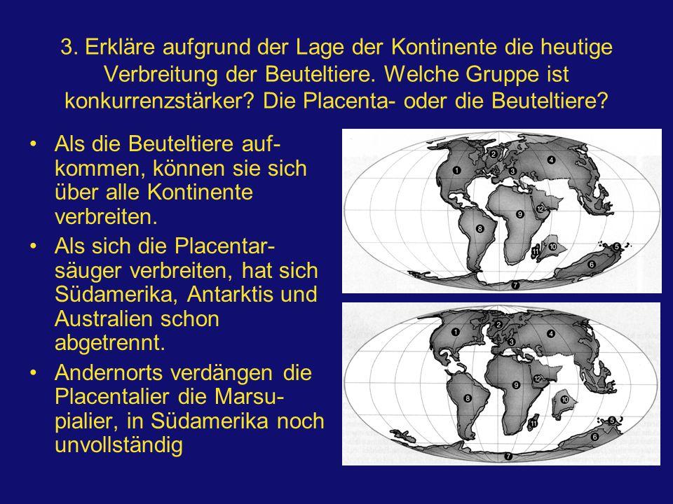 3. Erkläre aufgrund der Lage der Kontinente die heutige Verbreitung der Beuteltiere. Welche Gruppe ist konkurrenzstärker Die Placenta- oder die Beuteltiere
