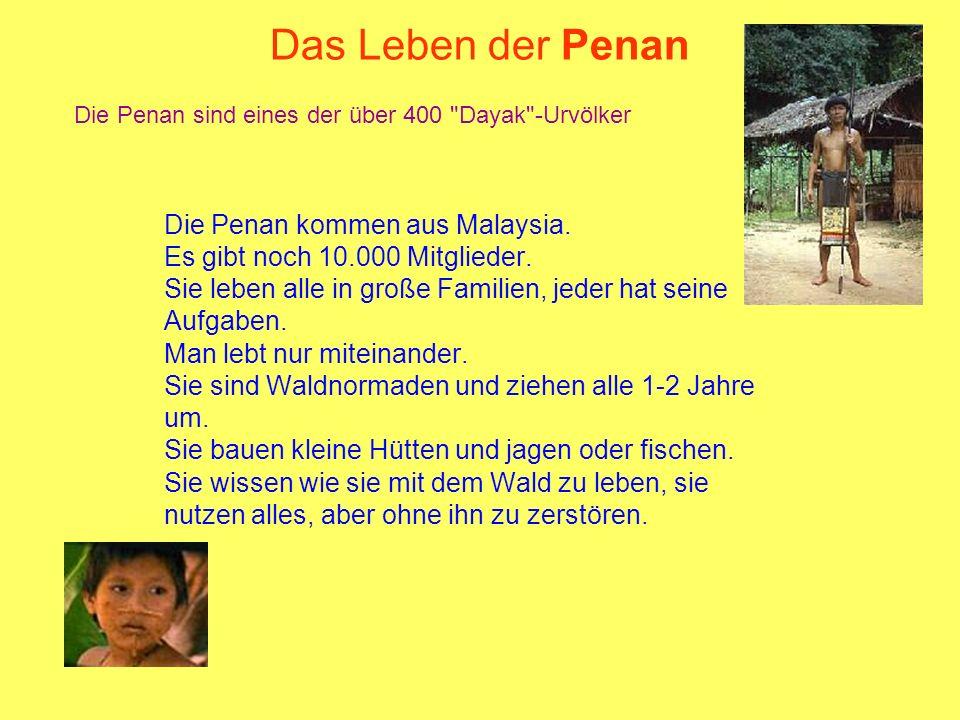 Das Leben der Penan Die Penan kommen aus Malaysia.