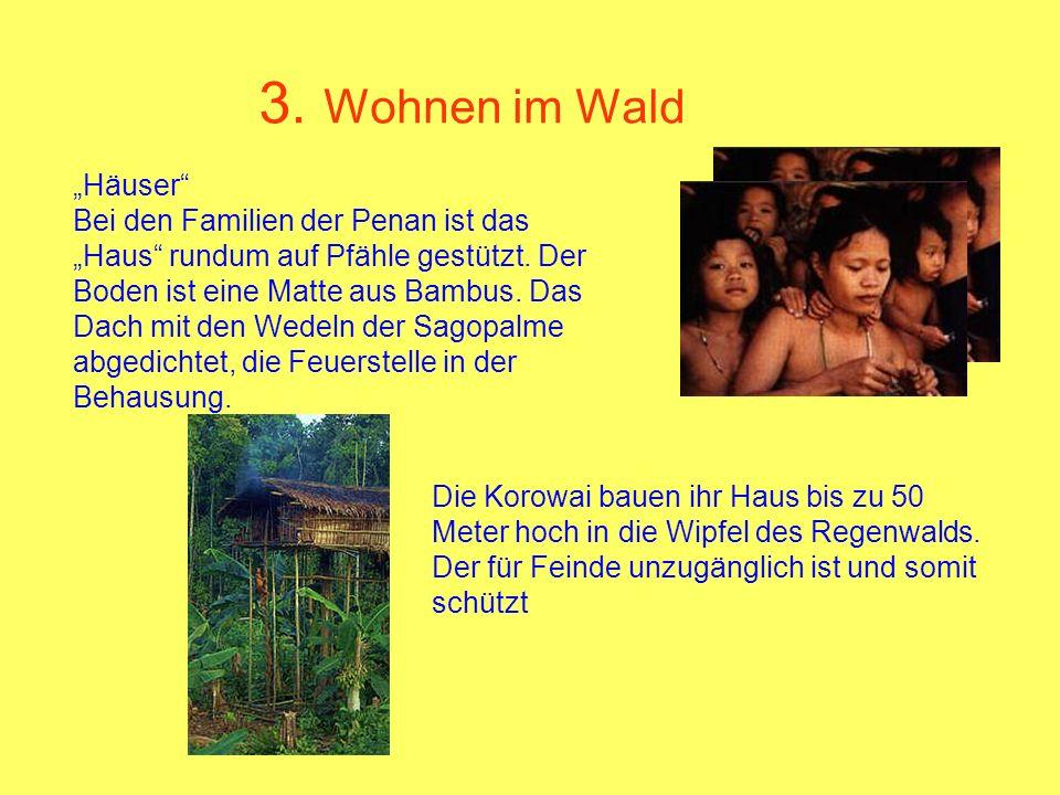"""3. Wohnen im Wald """"Häuser"""