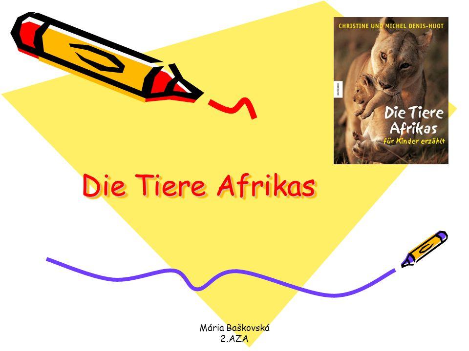 Die Tiere Afrikas Mária Baškovská 2.AZA.