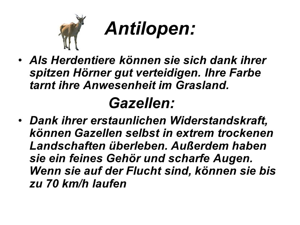 Antilopen: Als Herdentiere können sie sich dank ihrer spitzen Hörner gut verteidigen. Ihre Farbe tarnt ihre Anwesenheit im Grasland.