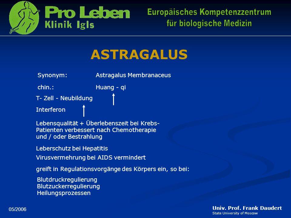 ASTRAGALUS Synonym: Astragalus Membranaceus chin.: Huang - qi