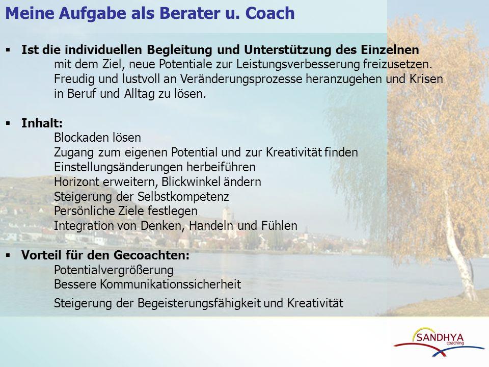 Meine Aufgabe als Berater u. Coach