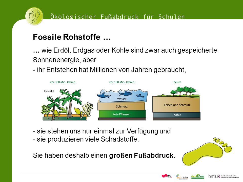 Fossile Rohstoffe … … wie Erdöl, Erdgas oder Kohle sind zwar auch gespeicherte. Sonnenenergie, aber.