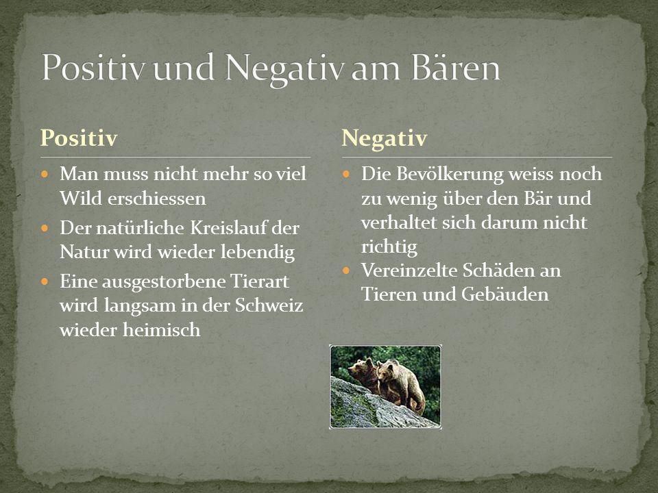 Positiv und Negativ am Bären