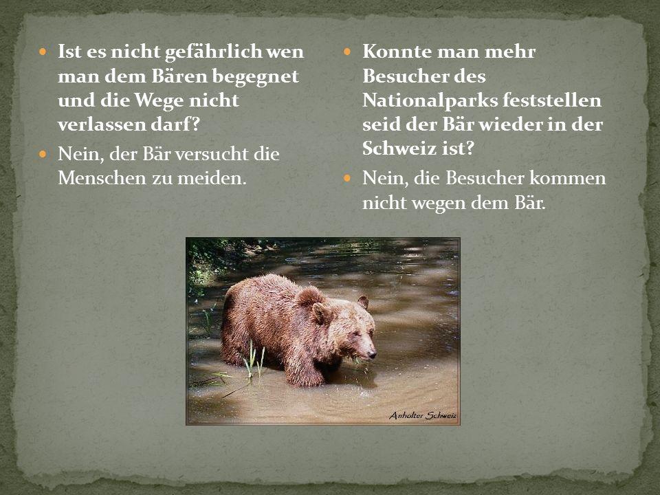 Ist es nicht gefährlich wen man dem Bären begegnet und die Wege nicht verlassen darf