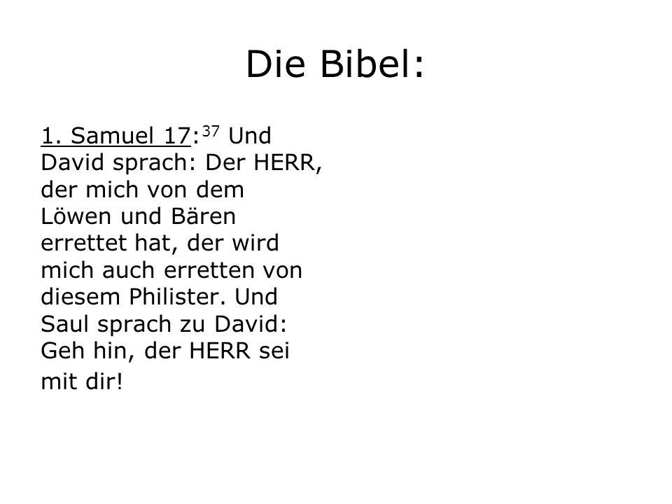 Die Bibel: