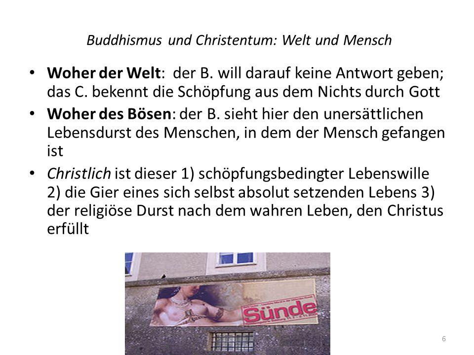 Buddhismus und Christentum: Welt und Mensch