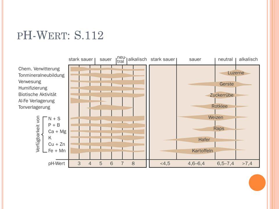 pH-Wert: S.112