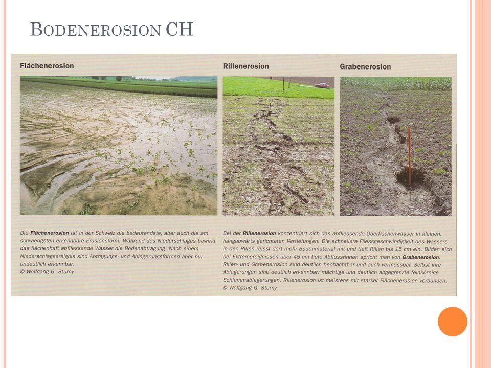Bodenerosion CH