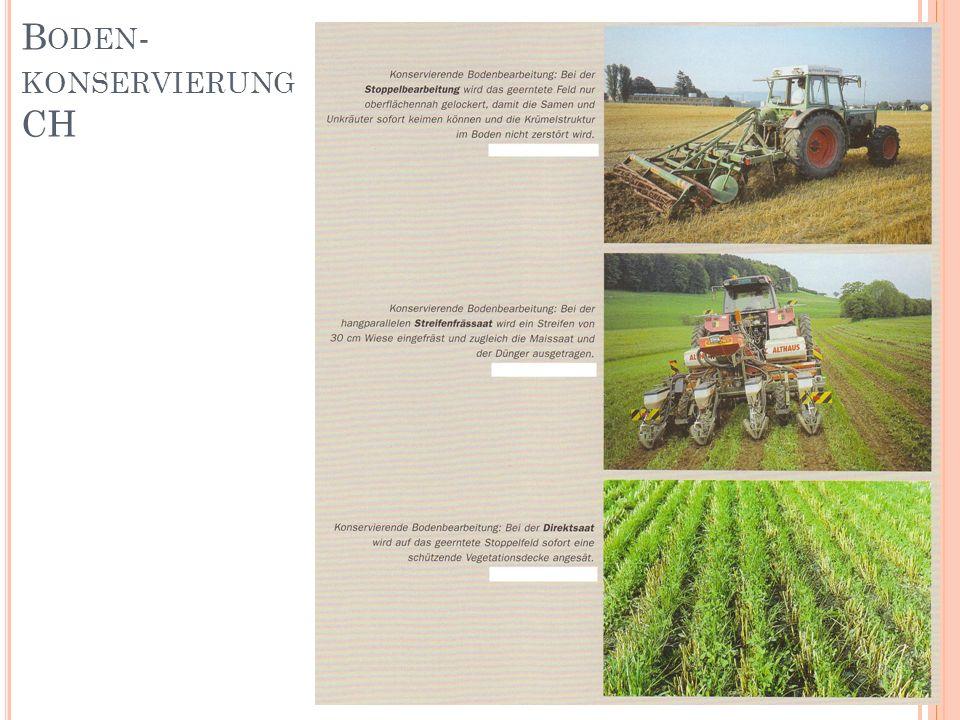 Boden- konservierung CH