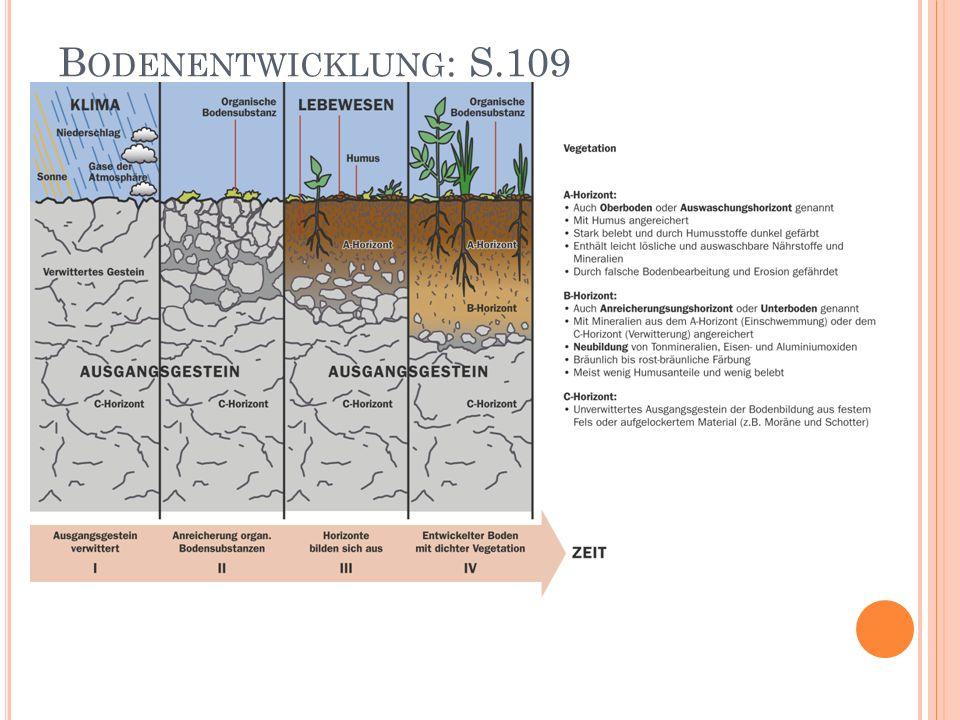 Bodenentwicklung: S.109