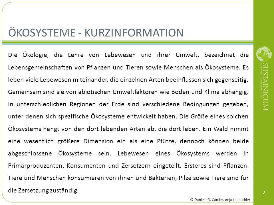 Ökosysteme - Kurzinformation