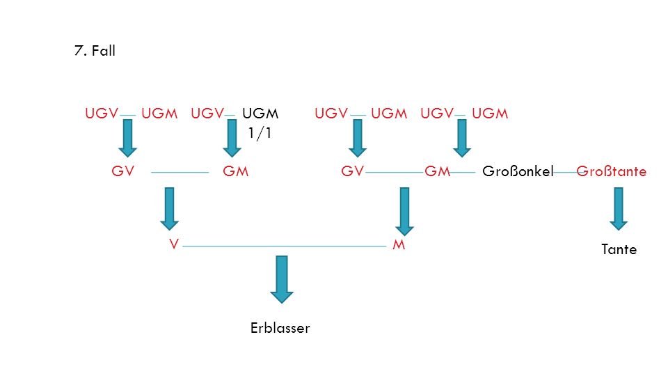 7. Fall UGV UGM UGV UGM. 1/1. UGV UGM UGV UGM. GV GM. GV GM Großonkel Großtante.