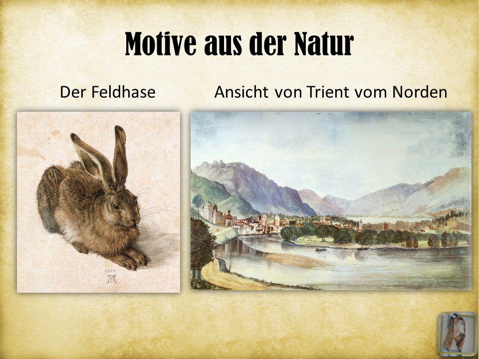 Motive aus der Natur Der Feldhase Ansicht von Trient vom Norden