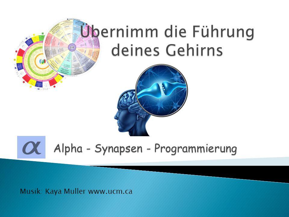 Alpha - Synapsen - Programmierung