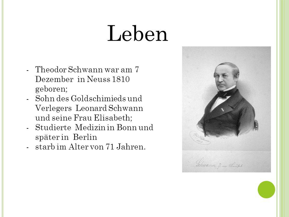 Leben Theodor Schwann war am 7 Dezember in Neuss 1810 geboren;