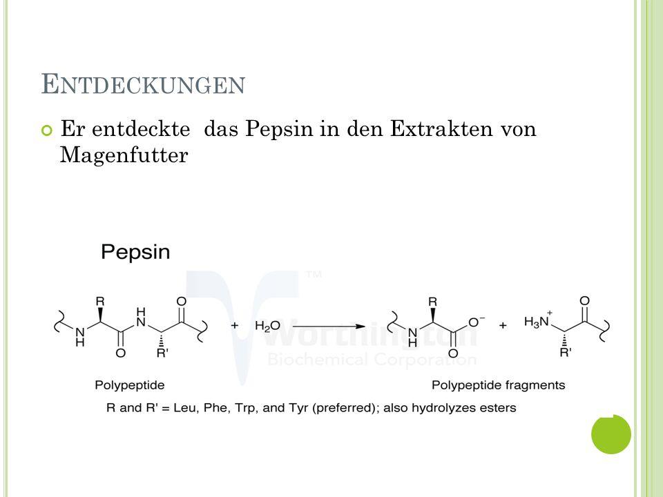 Entdeckungen Er entdeckte das Pepsin in den Extrakten von Magenfutter