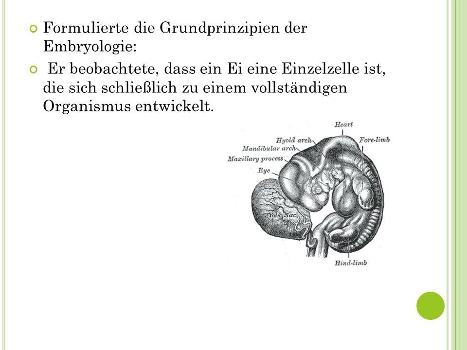 Formulierte die Grundprinzipien der Embryologie: