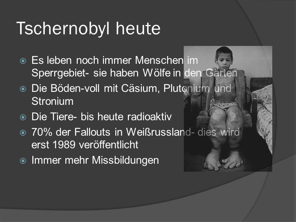 Tschernobyl heute Es leben noch immer Menschen im Sperrgebiet- sie haben Wölfe in den Gärten. Die Böden-voll mit Cäsium, Plutonium und Stronium.
