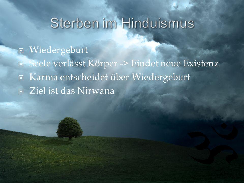 Sterben im Hinduismus Wiedergeburt