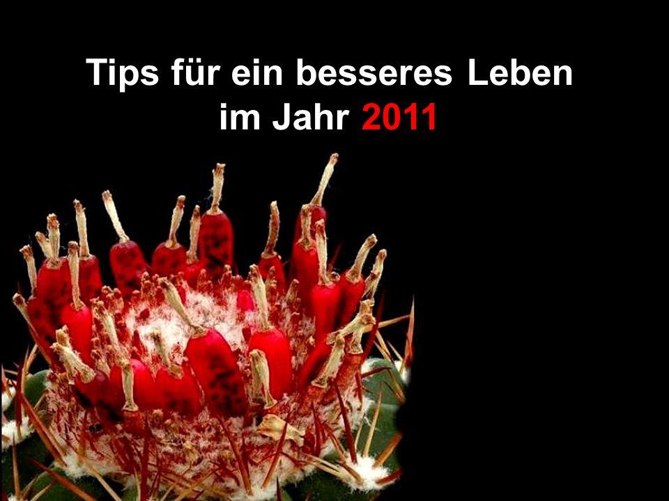Tips für ein besseres Leben im Jahr 2011