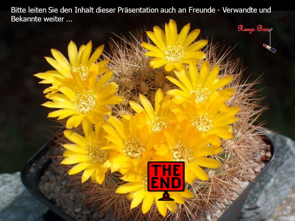 Bitte leiten Sie den Inhalt dieser Präsentation auch an Freunde - Verwandte und Bekannte weiter ...
