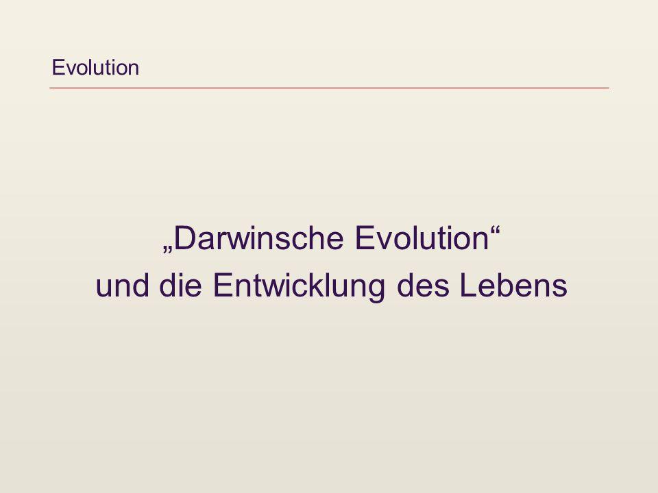 """""""Darwinsche Evolution und die Entwicklung des Lebens"""