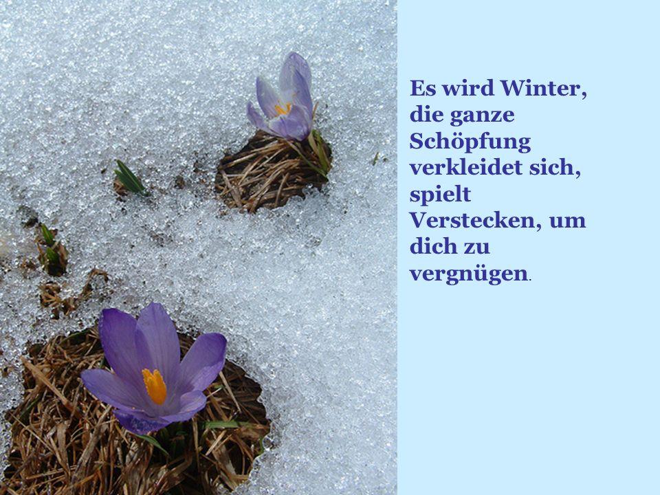 Es wird Winter, die ganze Schöpfung verkleidet sich, spielt Verstecken, um dich zu vergnügen.