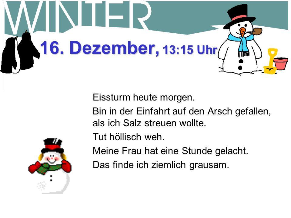 16. Dezember, 13:15 Uhr Eissturm heute morgen.