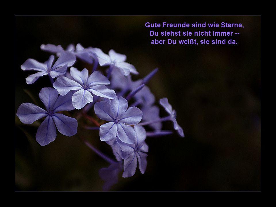 Gute Freunde sind wie Sterne, Du siehst sie nicht immer -- aber Du weißt, sie sind da.