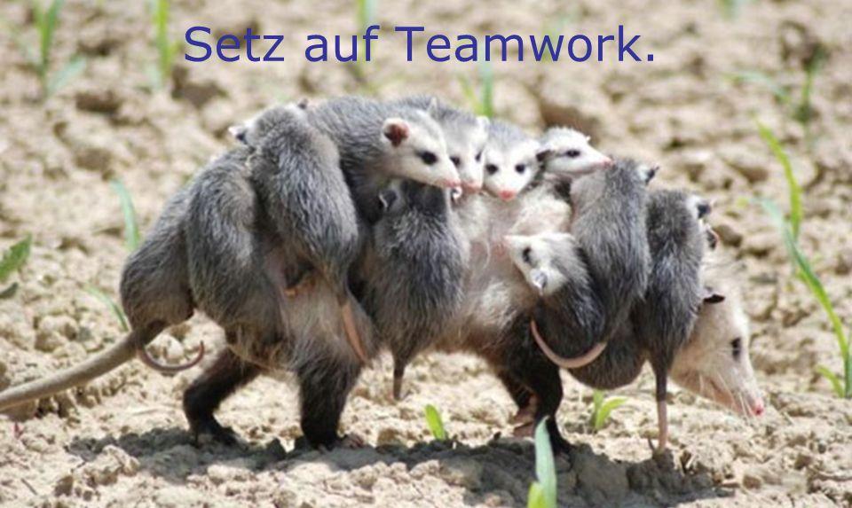 Setz auf Teamwork.