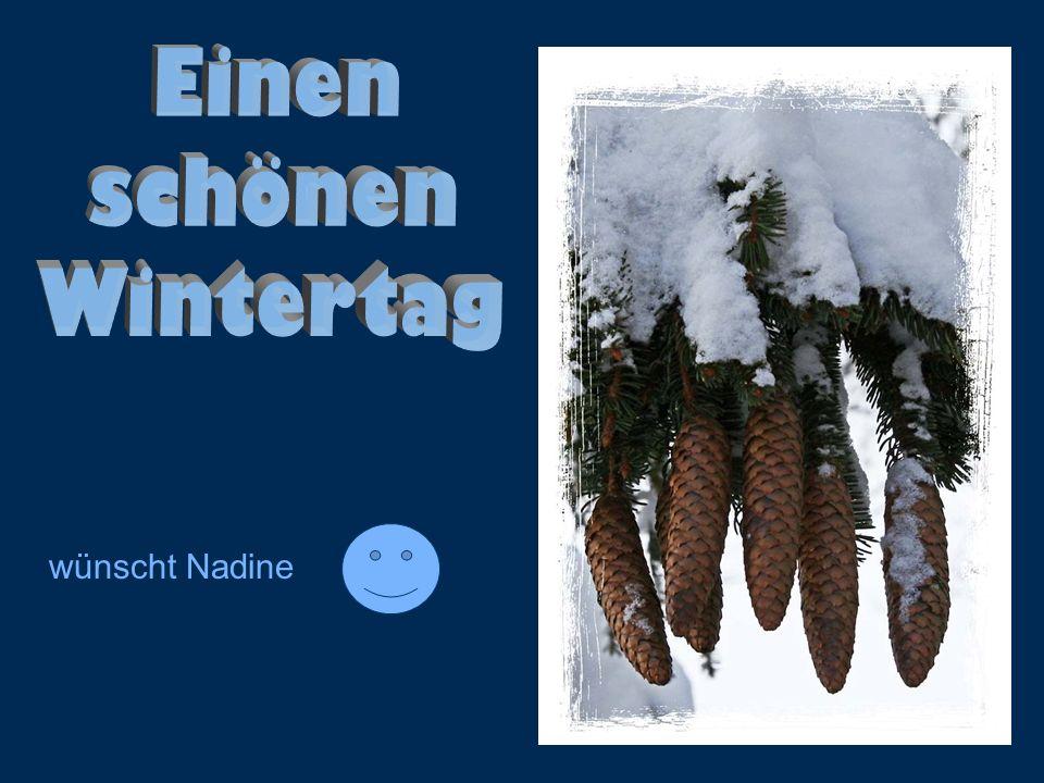 Einen schönen Wintertag wünscht Nadine
