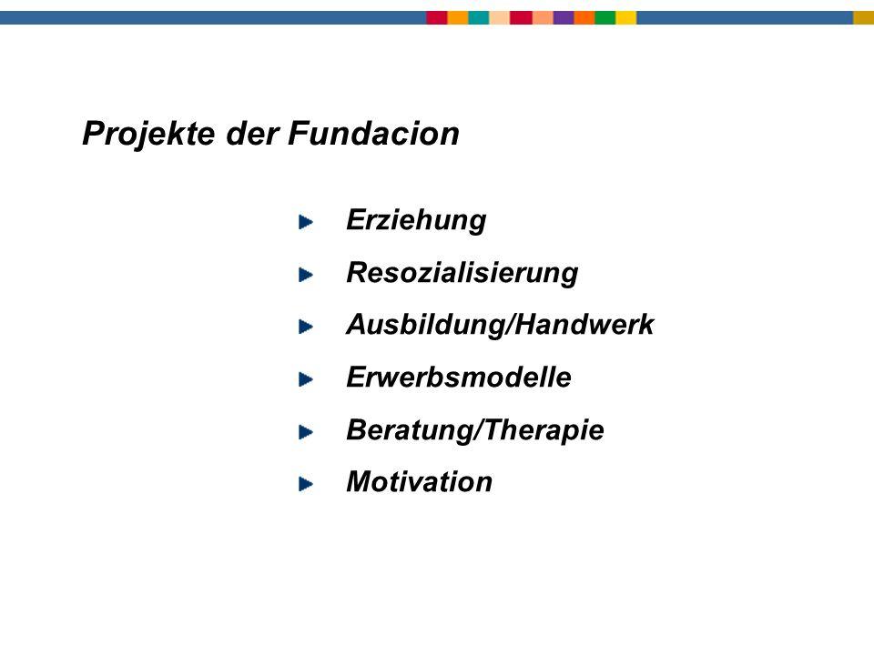 Projekte der Fundacion