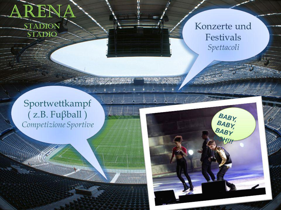 Arena Konzerte und Festivals Sportwettkampf ( z.B. Fuβball )