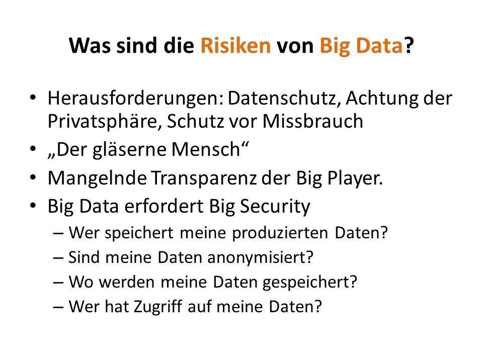 Was sind die Risiken von Big Data
