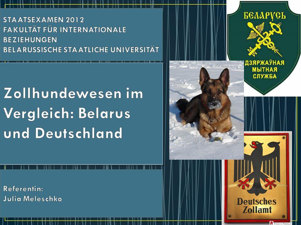 Zollhundewesen im Vergleich: Belarus und Deutschland