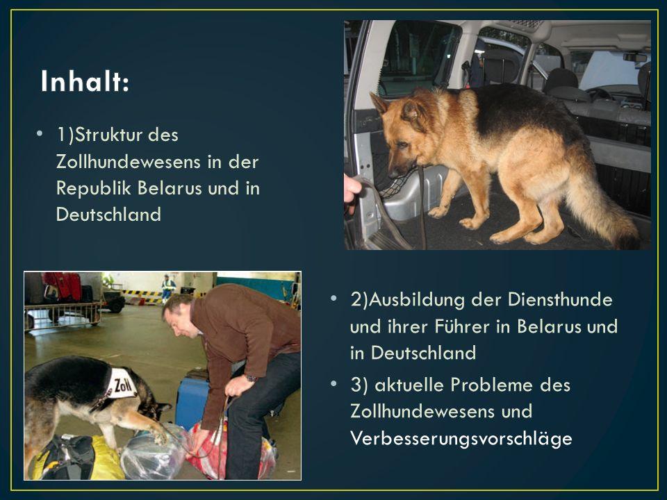 Inhalt: 1)Struktur des Zollhundewesens in der Republik Belarus und in Deutschland.