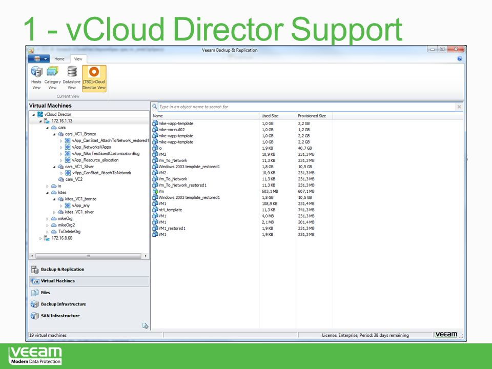 1 - vCloud Director Support