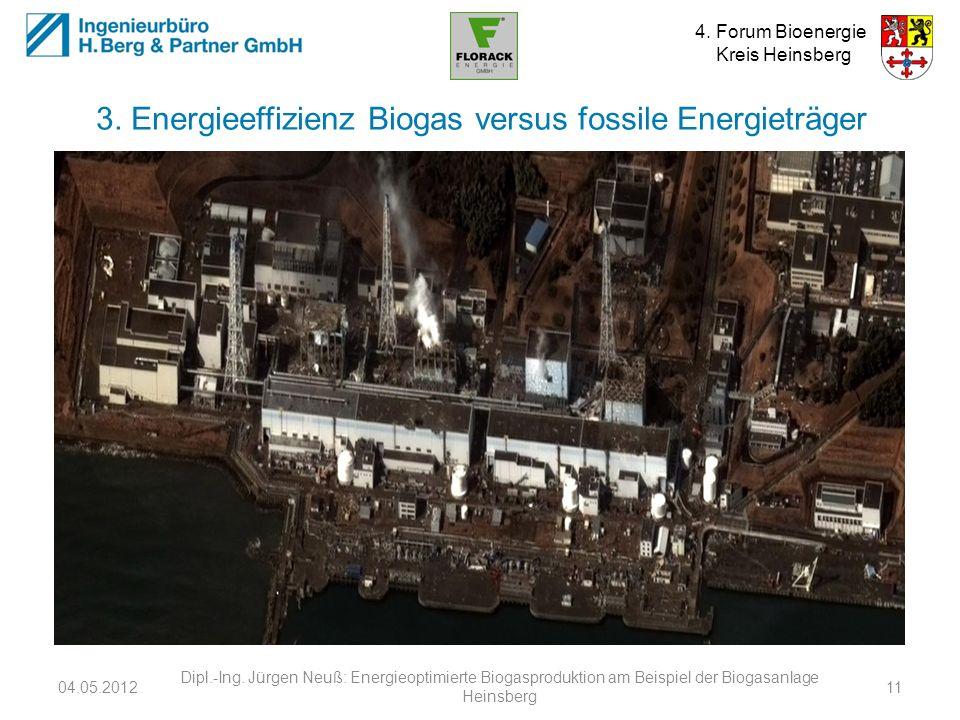 3. Energieeffizienz Biogas versus fossile Energieträger