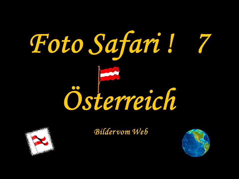 Foto Safari ! 7 Österreich