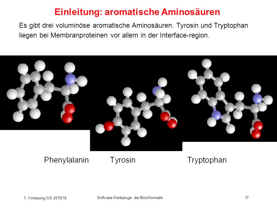 Einleitung: aromatische Aminosäuren
