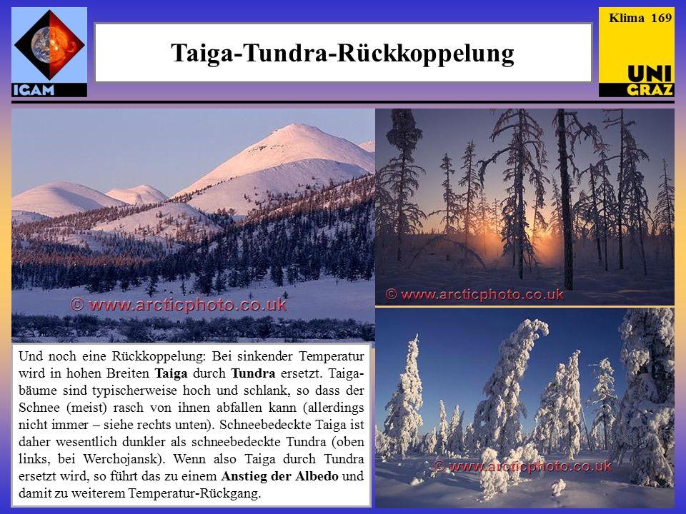 Taiga-Tundra-Rückkoppelung