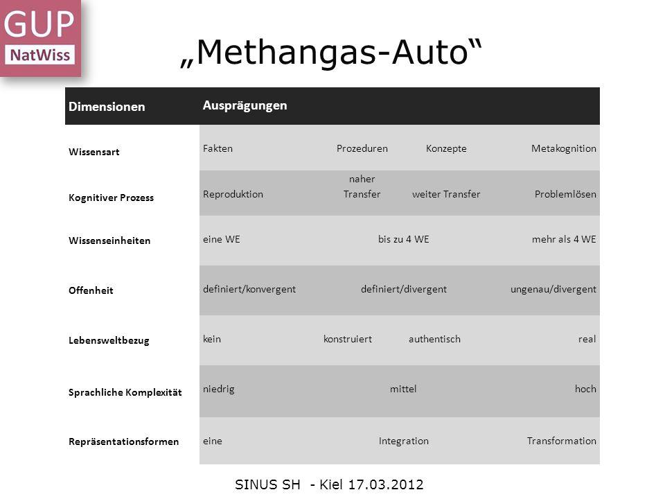 """""""Methangas-Auto Dimensionen Ausprägungen SINUS SH - Kiel 17.03.2012"""