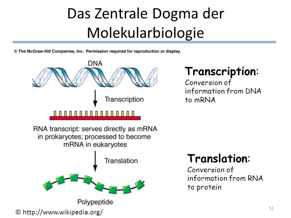 Das Zentrale Dogma der Molekularbiologie