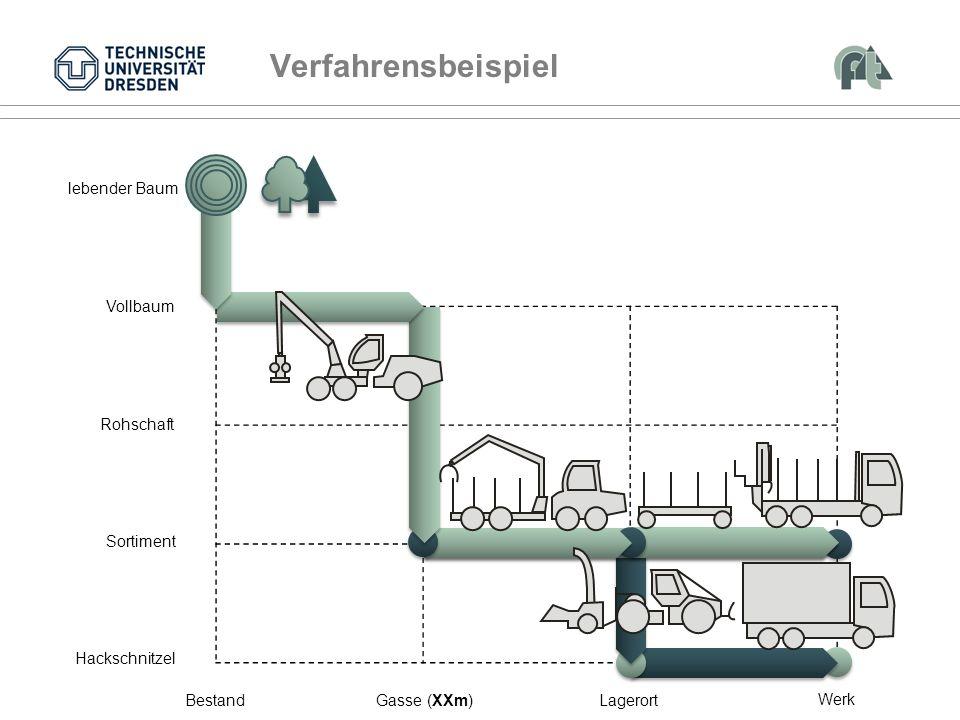 Verfahrensbeispiel Vollbaum Rohschaft Sortiment Bestand Gasse (XXm)